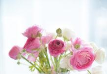 kytice ruze